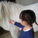 Equiterapie dans l'Yonne fillette cheval
